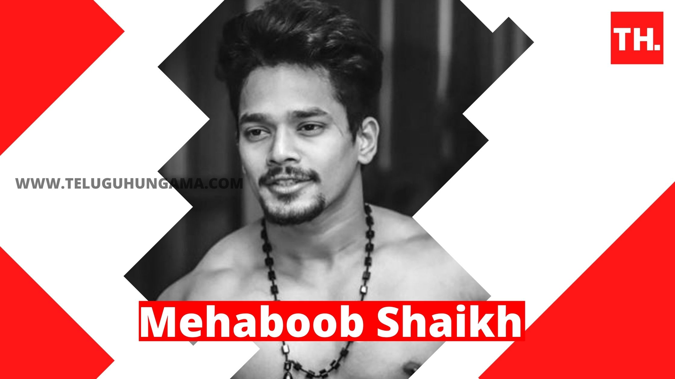 Mehaboob Shaikh Remuneration