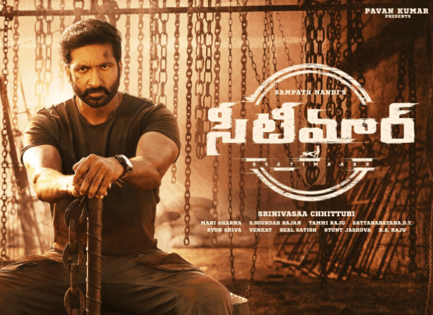 Seetimaarr Movie OTT Digital Rights, Satellite Rights and Release Date